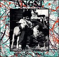 Angst - Mending Wall - Vinyl album on punk rock label SST Records
