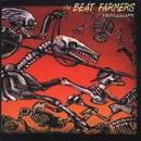 The Beat Farmers - Viking Lullabys - Cassette tape on Sector 2 Records