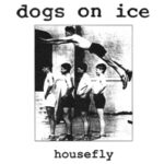 Dogs On Ice - Housefly - 7 inch vinyl on Allied Records