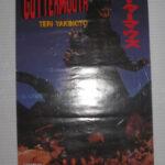 Guttermouth - Teri Yakaimoto - 1996 Record store promo poster