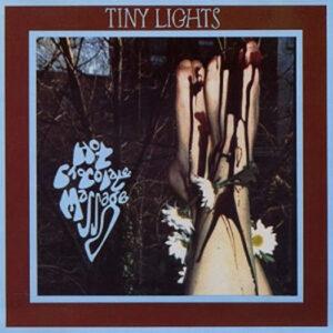 Tiny Lights - Hot Chocolate Massage - Vinyl album on Rough Trade Records