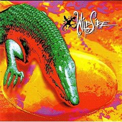Wildside - ST - Cassette tape on TNT Records