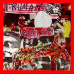 Trumans Water - Godspeed The Punchline - Homestead 1993 Record LP