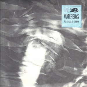 The Waterboys - A Girl Called Johnny - Chicken Jazz 7 Inch Vinyl Record