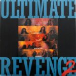 Compilation - Ultimate Revenge 2