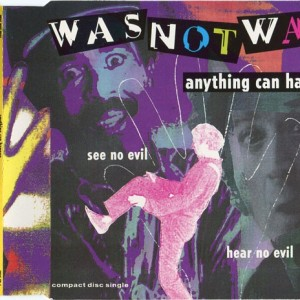 Was Not Was - Anything Can Happen