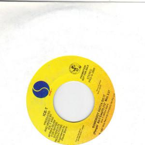 Ice-T - Somebody Gotta Do It - 7 inch vinyl record