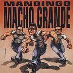 Man Dingo - Macho Grande - Vinyl album on Dr Strange Records