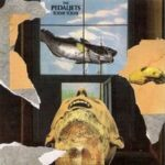 The Pedaljets - Today Today - Vinyl album on Communion Twilight Records