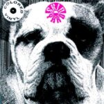 Skinyard - 1000 Smiling Knuckles - 10 Inch Vinyl Album