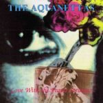 The Aquanettas - Love With The Proper Stranger - Vinyl Album on Nettwork Records