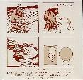 Compilation - Chunks - Vinyl album on SST Records
