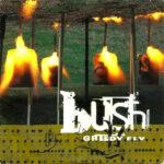 Bush – Greedy Fly